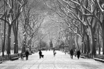 poets_walk_winter-fm1